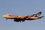 肉食獣さんが、成田国際空港で撮影した日本貨物航空 747-8KZF/SCDの航空フォト(写真)