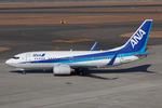 Scotchさんが、中部国際空港で撮影した全日空 737-781の航空フォト(写真)