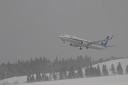 レガッテムさんが、秋田空港で撮影した全日空 737-881の航空フォト(飛行機 写真・画像)
