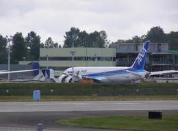 たにかわさんが、ボーイングフィールドで撮影した全日空 787-8 Dreamlinerの航空フォト(飛行機 写真・画像)
