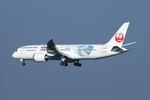 SKYLINEさんが、成田国際空港で撮影した日本航空 787-8 Dreamlinerの航空フォト(飛行機 写真・画像)