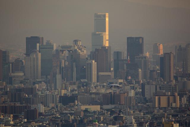 おぺちゃんさんが、伊丹空港で撮影した全日空の航空フォト(飛行機 写真・画像)