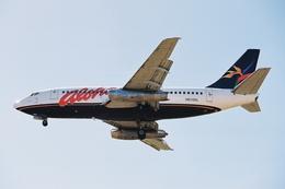 kinsanさんが、カフルイ空港で撮影したアロハ航空 737-2Y5/Advの航空フォト(飛行機 写真・画像)