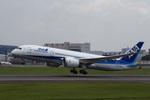 T.Sazenさんが、伊丹空港で撮影したボーイング 787-8 Dreamlinerの航空フォト(写真)