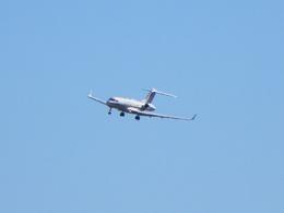 White Pelicanさんが、成田国際空港で撮影したドイツ空軍 BD-700-1A11 Global 5000の航空フォト(飛行機 写真・画像)