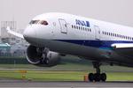 たっきーさんが、伊丹空港で撮影したボーイング 787-8 Dreamlinerの航空フォト(写真)