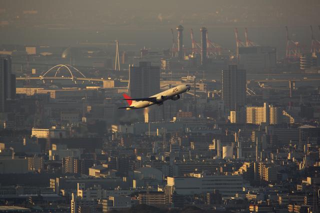 おぺちゃんさんが、伊丹空港で撮影した日本航空 777-246の航空フォト(飛行機 写真・画像)