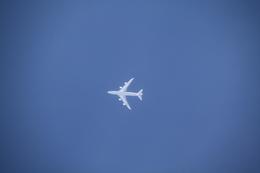 shimayanJPさんが、旭川空港で撮影した航空自衛隊 747-47Cの航空フォト(飛行機 写真・画像)