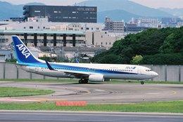 豆助さんが、伊丹空港で撮影した全日空 737-881の航空フォト(飛行機 写真・画像)