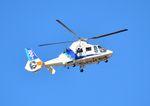 mojioさんが、静岡空港で撮影したオールニッポンヘリコプター AS365N2 Dauphin 2の航空フォト(飛行機 写真・画像)