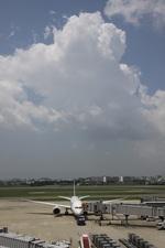 turt@かめちゃんさんが、伊丹空港で撮影したボーイング 787-8 Dreamlinerの航空フォト(写真)
