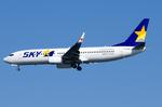 パンダさんが、羽田空港で撮影したスカイマーク 737-81Dの航空フォト(飛行機 写真・画像)