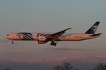 肉食獣さんが、成田国際空港で撮影したエジプト航空 777-36N/ERの航空フォト(写真)
