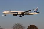 肉食獣さんが、成田国際空港で撮影した全日空 777-381/ERの航空フォト(写真)
