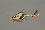 アイスコーヒーさんが、名古屋飛行場で撮影したオールニッポンヘリコプター EC135T2の航空フォト(飛行機 写真・画像)