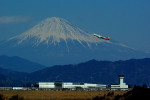 rjnsphotoclub-No.07さんが、静岡空港で撮影したアシアナ航空 A321-231の航空フォト(写真)