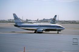 フェニックス・スカイハーバー国際空港 - Phoenix Sky Harbor International Airport [PHX/KPHX]で撮影されたピードモント・エアラインズ - Piedmont Airlines [US/PDT]の航空機写真