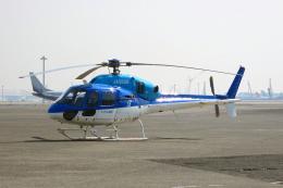 kingmengraiさんが、羽田空港で撮影した東京センチュリー AS355N Ecureuil 2の航空フォト(飛行機 写真・画像)