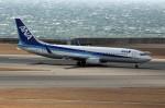 アイスコーヒーさんが、中部国際空港で撮影した全日空 737-881の航空フォト(飛行機 写真・画像)