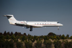 パンダさんが、成田国際空港で撮影したAVNエア G-V-SP Gulfstream G550の航空フォト(写真)