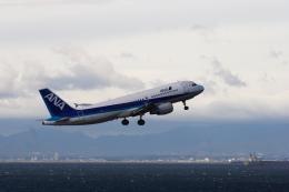いっくんさんが、中部国際空港で撮影した全日空 A320-214の航空フォト(飛行機 写真・画像)