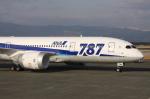 WING_ACEさんが、熊本空港で撮影した全日空 787-8 Dreamlinerの航空フォト(飛行機 写真・画像)