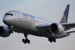 787 yrさんが、成田国際空港で撮影したユナイテッド航空 787-8 Dreamlinerの航空フォト(飛行機 写真・画像)