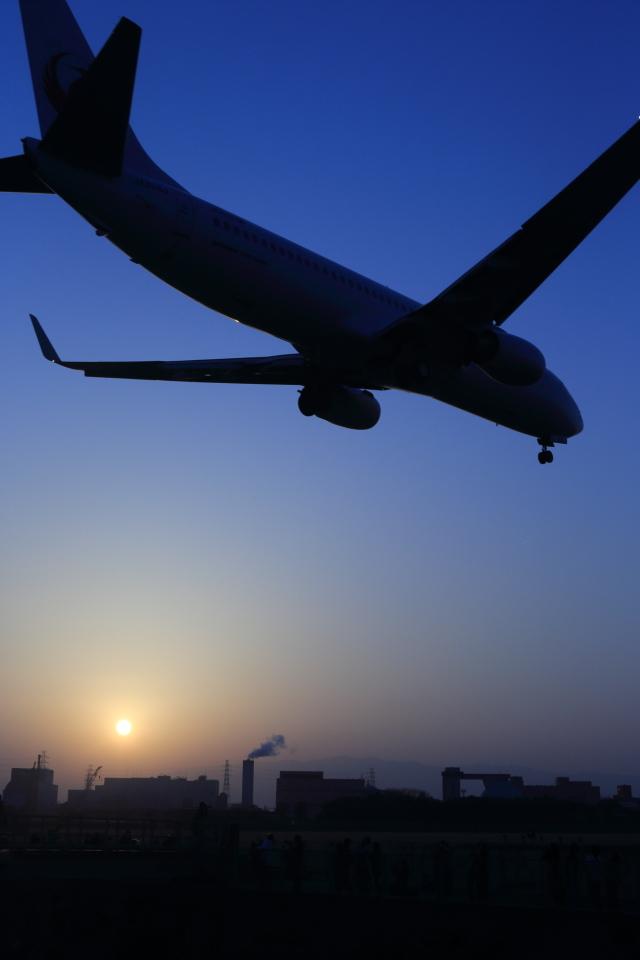 まさとしさんが、伊丹空港で撮影したJALエクスプレス 737-846の航空フォト(飛行機 写真・画像)