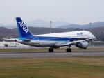 アイスコーヒーさんが、函館空港で撮影した全日空 A320-211の航空フォト(飛行機 写真・画像)