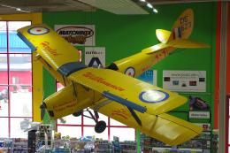 kanade/Ryo@S.O.R.A.さんが、ジンスハイム滑空場で撮影した不明 DH.82A Tiger Mothの航空フォト(飛行機 写真・画像)