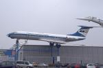 kanadeさんが、ジンスハイム滑空場で撮影したマレーヴ・ハンガリー航空 Tu-134Aの航空フォト(写真)