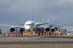 Hikobouzさんが、ペインフィールド空港で撮影した全日空 787-8 Dreamlinerの航空フォト(写真)