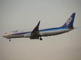 chappyさんが、伊丹空港で撮影した全日空 737-881の航空フォト(飛行機 写真・画像)
