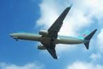 rjnsphotoclub-No.07さんが、静岡空港で撮影した大韓航空 737-8LHの航空フォト(写真)