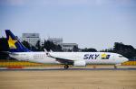 パンダさんが、成田国際空港で撮影したスカイマーク 737-8FHの航空フォト(写真)