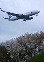 rjnsphotoclub-No.07さんが、静岡空港で撮影したニュージーランド航空 767-319/ERの航空フォト(写真)