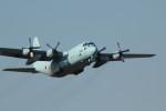 アイスコーヒーさんが、入間飛行場で撮影した航空自衛隊 C-130H Herculesの航空フォト(飛行機 写真・画像)