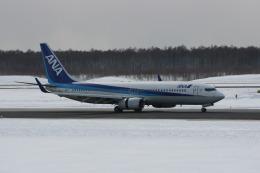BAIYUN BASEさんが、新千歳空港で撮影した全日空 737-881の航空フォト(飛行機 写真・画像)