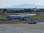アイスコーヒーさんが、函館空港で撮影したチャイナエアライン 737-8Q8の航空フォト(飛行機 写真・画像)