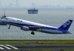 JA8077さんが、羽田空港で撮影した全日空 A320-211の航空フォト(飛行機 写真・画像)