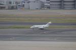 uhfxさんが、羽田空港で撮影した金鹿航空 Hawker 800/1000の航空フォト(飛行機 写真・画像)