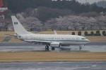 uhfxさんが、成田国際空港で撮影したサウジアラビア王室空軍 737-7DP BBJの航空フォト(飛行機 写真・画像)