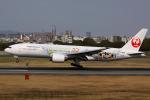 たっきーさんが、伊丹空港で撮影した日本航空 777-246の航空フォト(写真)