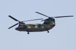 Kuuさんが、那覇空港で撮影した航空自衛隊 CH-47J/LRの航空フォト(飛行機 写真・画像)