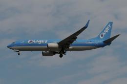 ★グリオさんが、フォートローダーデール・ハリウッド国際空港で撮影したキャンジェット航空 737-8K5の航空フォト(飛行機 写真・画像)