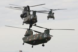 speedbirdさんが、習志野演習場で撮影した陸上自衛隊 CH-47Jの航空フォト(飛行機 写真・画像)
