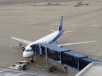 JA8197さんが、中部国際空港で撮影した全日空 A320-211の航空フォト(写真)