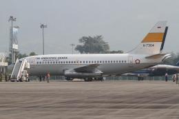 mountainhomeさんが、ランカウイ国際空港で撮影したインドネシア空軍 737-2Q8/Advの航空フォト(飛行機 写真・画像)