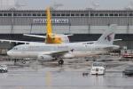 関西国際空港 - Kansai International Airport [KIX/RJBB]で撮影されたカタールアミリフライト - Qatar Amiri Flight [QAF]の航空機写真