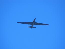 なまくら はげるさんが、横田基地で撮影したアメリカ空軍 U-2 Dragon Ladyの航空フォト(写真)